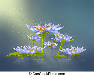 Water lily - Drawing water lily with leaves and light