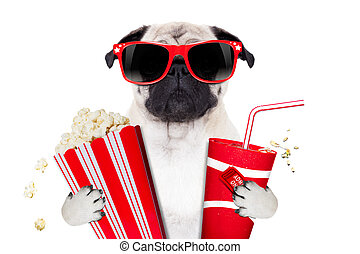 movie dog - cinema movie tv watching pug dog isolated on...