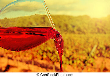 glass of red wine in a vineyard
