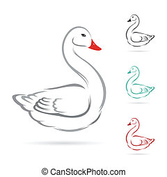 Vector image of swan on a white background.