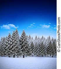 Fir tree forest in snowy landscape - Digitally generated fir...