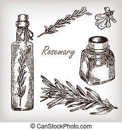 cucina, erbe, spezie, rosmarino, olio, set, mano, disegnato,...