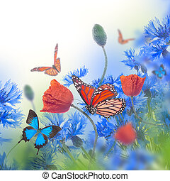Red poppies field and blue cornflowers with butterfly