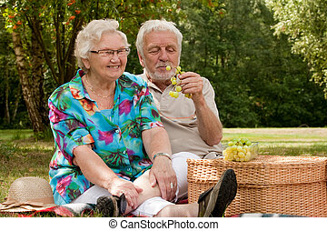Senior couple picknicking in the park - Elderly couple...