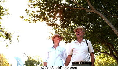 Senior couple walking and holding hands on sunny day in slow...