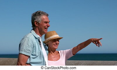 Senior couple looking at something from the pier in slow...