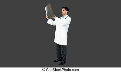 Young doctor standing with x-ray on grey screen background