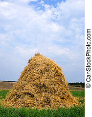 haystack hay straw - Landscape with haystacks and blue sky...