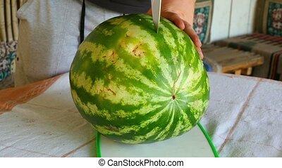 Watermelon - Man cuts the watermelon into slices