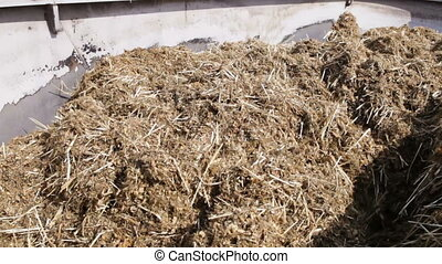 mixed fodder is produced for cows - mixed fodder is produced...