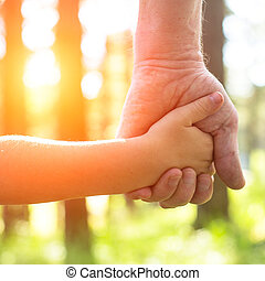 Close-up hands, an adult holding a childs hand, nature and...