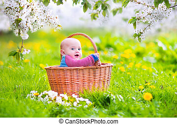 Happy baby in a basket in a blooming apple tree - Adorable...