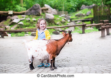 Cute little girl feeding a goat - Cute little toddler girl...