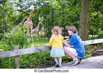 Brother and sister watching giraffes in a zoo - Happy...