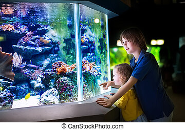 Brother and sister watching fishes in a zoo - Happy laughing...