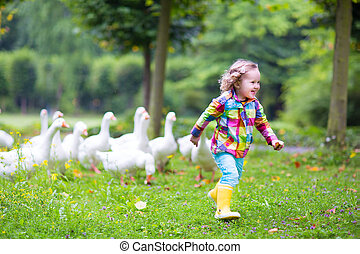 Little girl playing with geese - Funny happy little girl,...