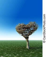 Heart Shape Tree - A heart shaped tree standing alone in...