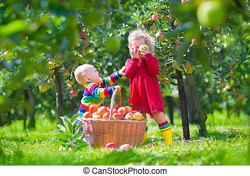 Kids with apple basket - Happy little children, toddler girl...