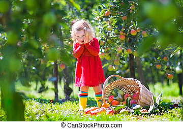 Little girl in an apple garden - Adorable little toddler...
