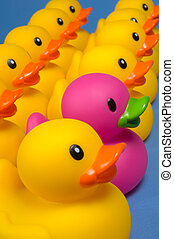 Dare to be different - rubber ducks on blue - Purple rubber...