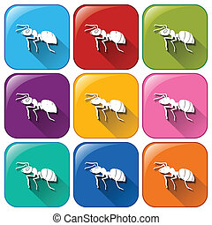 Ant icons - Illustration of the ant icons on a white...
