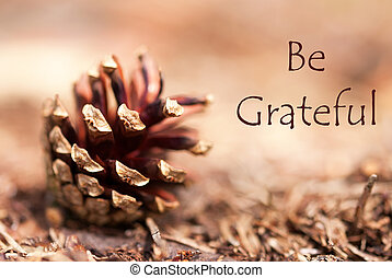 Fir Cone with Be Grateful - A Fir Cone in a brown Autumnal...