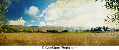 Country panoramic landscape - Field and blue sky - rural...