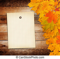 Old grunge paper with autumn maple branch leaves on the...