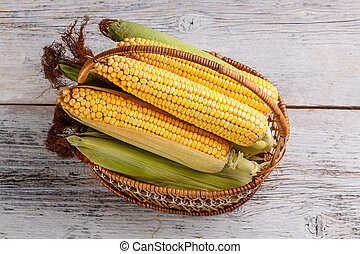 Fresh corn - Top view of fresh raw corn cob in basket