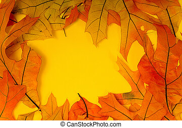 Fall Leaf Background - Fall or autuman leaves on a yellow...