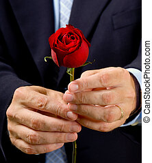 Man giving rose - Man in business suit or dressed up giving...