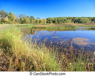 Lake LaGrange Kettle Moraine State Forest - Shoreline...