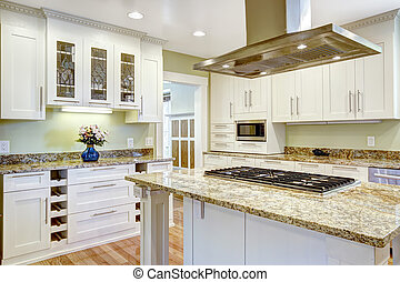 Kitchen island with built-in stove, granite top and hood