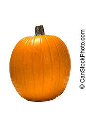 Pumpkin on white