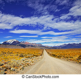 The road in the pampas - The endless pampas in Patagonia,...