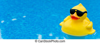 Rubber Duck on Blue - Yellow Rubber duck with shades on blue...