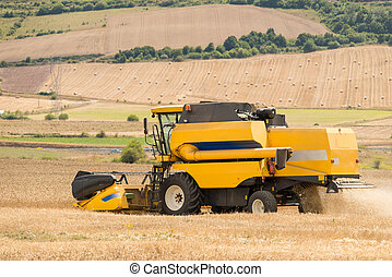 combine harvester - view of a combine harvesting wheat