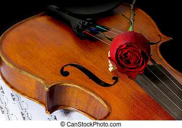 Violin, rose and sheet music - A violin or fiddle, red rose...
