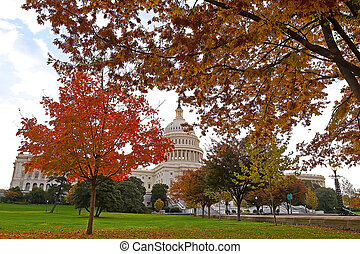 Colorful autumn on Capitol Hill