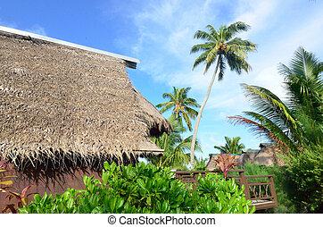 Beach Bungalows in Aitutaki Cook Islands - AITUTAKI - SEP...