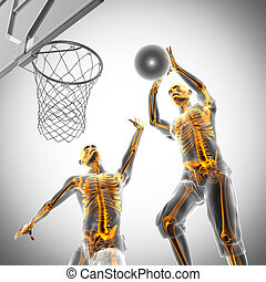 basketball game player radiography image - basketball game...