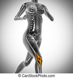 running woman radiography scan image