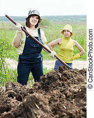 Two women works with manure - Two women works with animal...