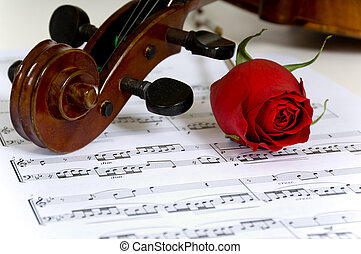 Violin, rose and sheet music - A violin peghead, red rose...