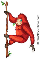 A playful red orangutan - Illustration of a playful red...