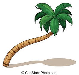 A coconut tree - Illustration of a coconut tree on a white...