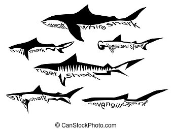 shark species. silhouette of sharks isolated on white