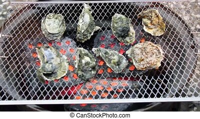 Oysters on the Grill. time lapse