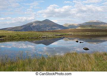 Llyn Dwythwch reflections - A grassy bank on Llyn Dwythwch...