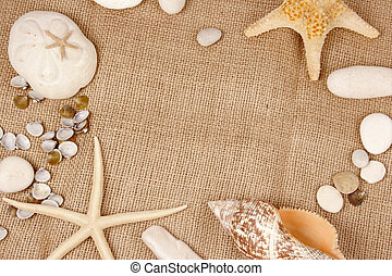 Sea shell and star fish - Beach postcard with sea shell and...